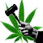 SSDP Students Seek to Unite Marijuana Law Reform Movements in Oregon and California