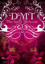 DMT The Spirit Molecule