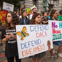 DACA: The Status Today and Why Drug Reformers Should Care