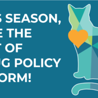 This season, give the gift of drug policy reform