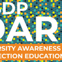 Announcing the 2019 DARE Scholarship Fund
