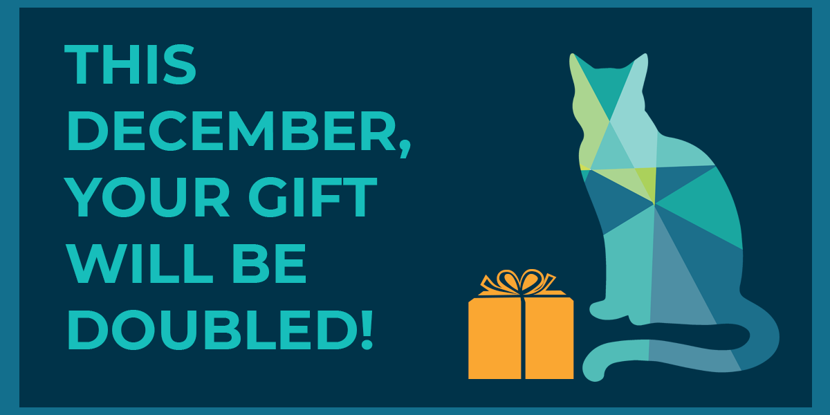 This December, your gift will be doubled!