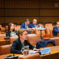 United Nations Common Position on Drug Decriminalisation