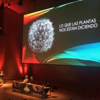 Review of the World Ayahuasca Conference 2019