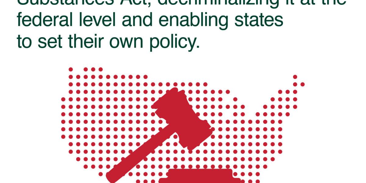 Legalization Archives - SSDP