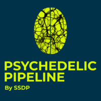 Hear what our members say about the Psychedelic Career Pipeline