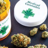 'Medicinal Cannabis 'll boost Nigeria's economy'