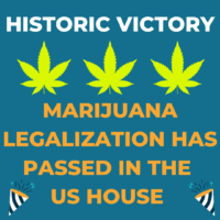 Another Historic Victory: The MORE Act Has Passed in the House of Representatives