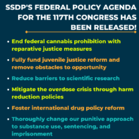 SSDP's Federal Policy Agenda for the 117th Congress Has Been Released